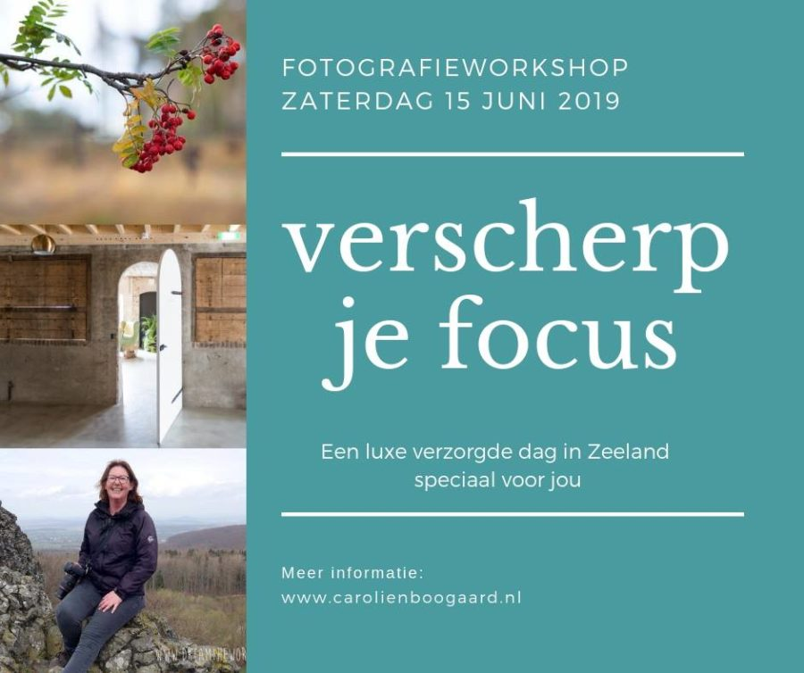 15 juni: Fotografieworkshop 'verscherp je focus'
